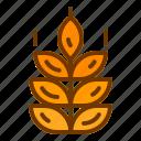 bread, health, plant, wheat
