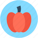 bell pepper, capcicum, pepper, sweet pepper, vegetable icon