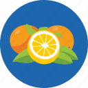 diet, food, fruit, healthy, orange icon