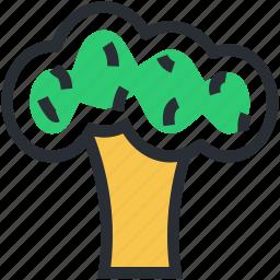 broccoli, food, healthy food, nutrition, vegetable icon