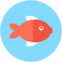 cooked fish, fish, food, healthy food, seafood