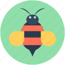 apis mellifera, bee, bee hive, honey bee, insect icon