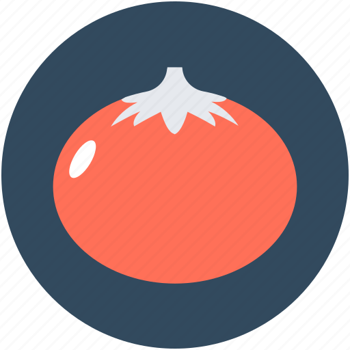 Food, fruit, healthy food, nutrition, tomato icon - Download on Iconfinder