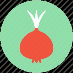 fodder radish, kohlrabi, turnip, vegetable, white turnip icon