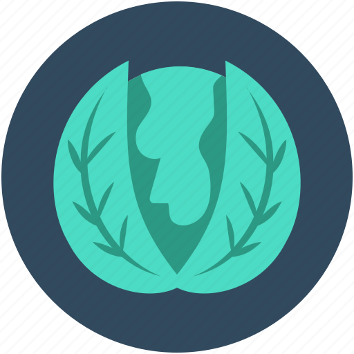 cabbage, diet, food, headed cabbage, vegetable icon