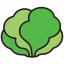 food, lettuce, meal, salad, vegetable icon