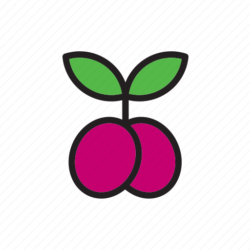 food, fruit, grape, vegetable icon