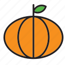 food, vegetable, pumpkin