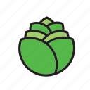 food, lettuce, salad, vegetable icon