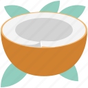 coco, coconut, food, half coconut, nut, nutrition, tropical fruit icon