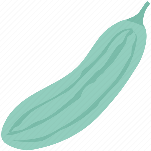 Courgette, cucumber, cucumis sativus, food, healthy diet, vegetable, zucchini icon - Download on Iconfinder