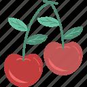 berries, cherry, cherry fruit, fruit, healthy food, organic icon