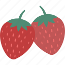 berry fruit, diet, fruit, healthy food, raw food, strawberry icon