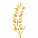 durum wheat, ear of wheat, grain, wheat, wheat ear icon