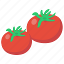 fruit, healthy food, natural tomato, nutrition food, organic food, tomato icon