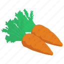 diet food, food, organic carrots, root vegetable, vegetable icon