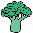 brocolli, food, meal, tree, vegetable icon