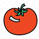 food, ingredient, taste, tomato, vegetable icon