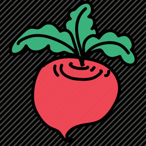 food, harvest, ingredient, turnip, vegetable icon