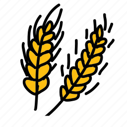 food, harvest, health, ingredient, natural, wheat icon