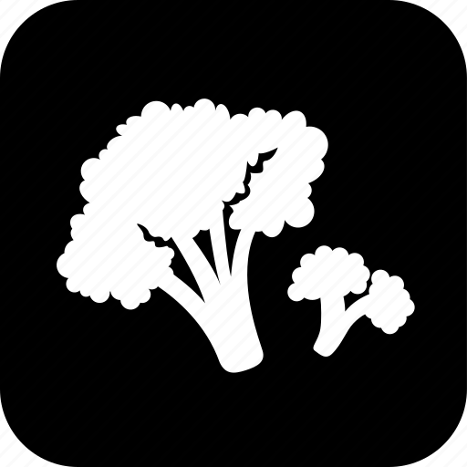 broccoli, cooking, food, healthy, meal, vegetable icon