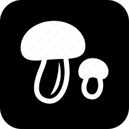 cooking, fingi, food, meal, mushroom, restaurant icon