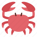 crab, food, seafood, shellfish icon