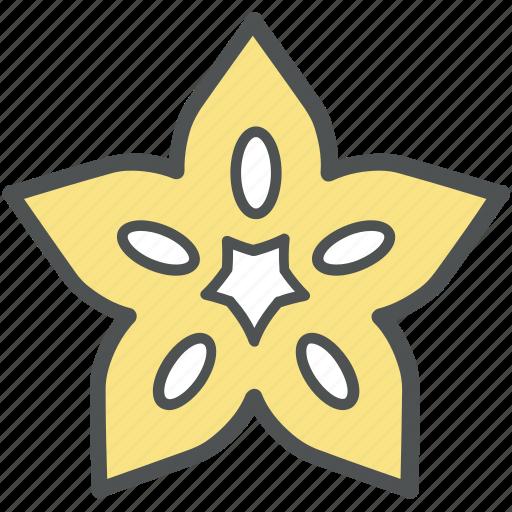 diet, echinoderm, sea star, seafood, star fish icon