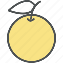 citrus, citrus fruit, food, fruit, healthy food, orange icon