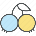 berry, cherry, food, fruit, healthy diet, healthy food icon
