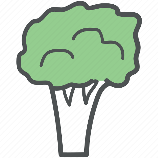 broccoli, food, healthy diet, meal, organic, vegetable icon