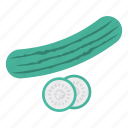 cucumber, eat, food, vegetable icon