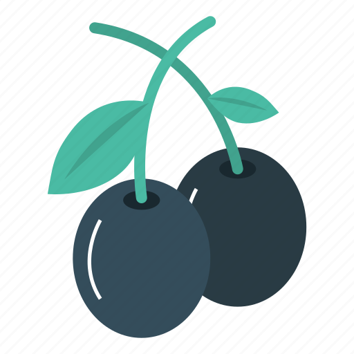 Berry, cherry, food, fruit icon - Download on Iconfinder