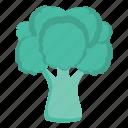 broccoli, eat, food, vegetable