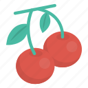 berry, cherry, food, fruit icon