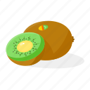food, fruit, kiwifruit icon