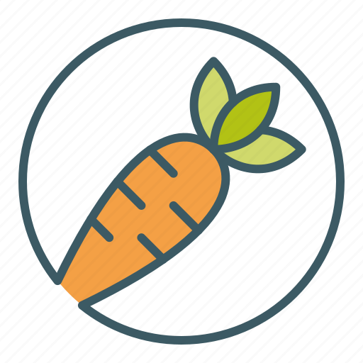 carrot, circle, eat, healthy food, vegetable icon