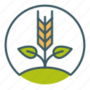circle, crops, farm, farming, grow, seed, sprout icon
