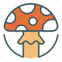 circle, food, fungus, mushroom, poison, poisonous, toxic icon