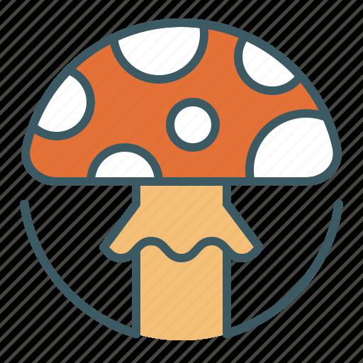 circle, food, fungus, mushroom, poison, poisonous, toxic icon