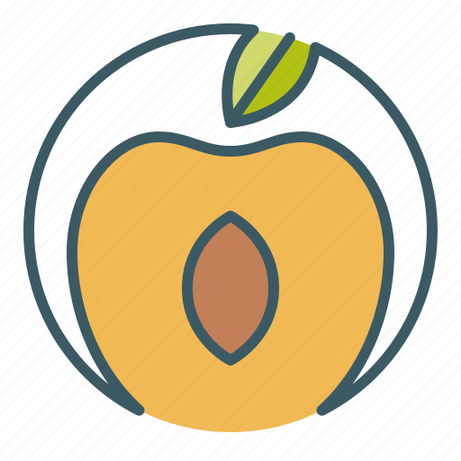 apricot, circle, eat, fruit, healthy food, peach icon