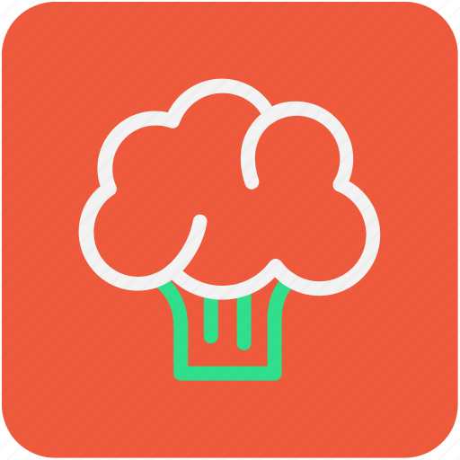broccoli, food, healthy food, raw food, vegetable icon