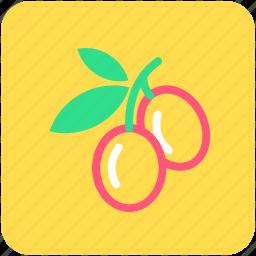 cherry, food, fruit, healthy food, stone fruit icon