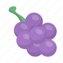 fruit, grapes, healthy, organic icon