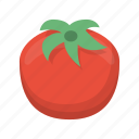 food, fruit, tomato, vegetable icon