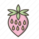 food, fruit, strawberries, strawberry icon