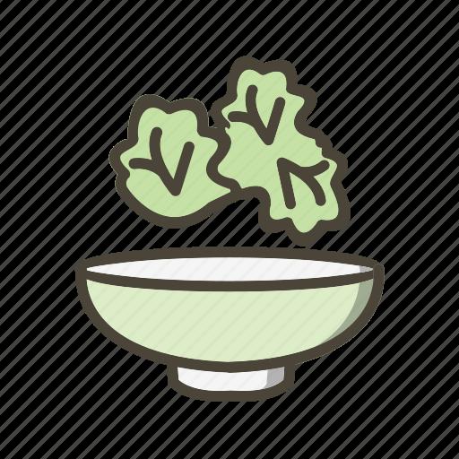 cucumber, lettuce, salad icon