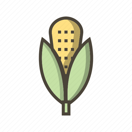 corn, maize, plant icon