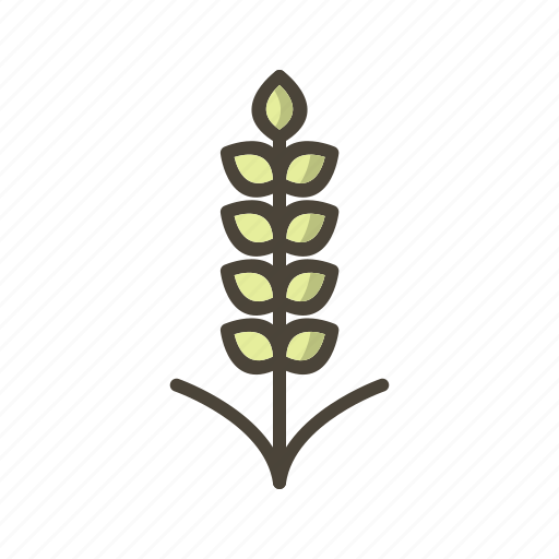 food, grain, wheat icon