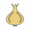 cooking, food, onion, vegetable icon